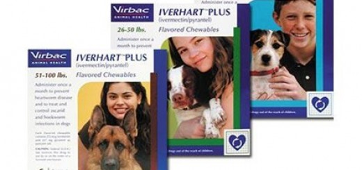 Virbac Expands Recall for Iverhart Plus Heartworm Preventative