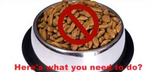 Recalled Pet Food