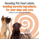 Decoding Pet Food Labels: Avoiding Harmful Ingredients for Dogs and Cats